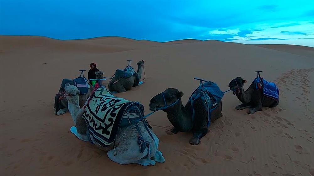 TRAVEL VLOG. Марокко